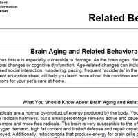 Brain Aging and Related Behavioral Changes